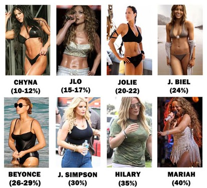 percent fat Female body